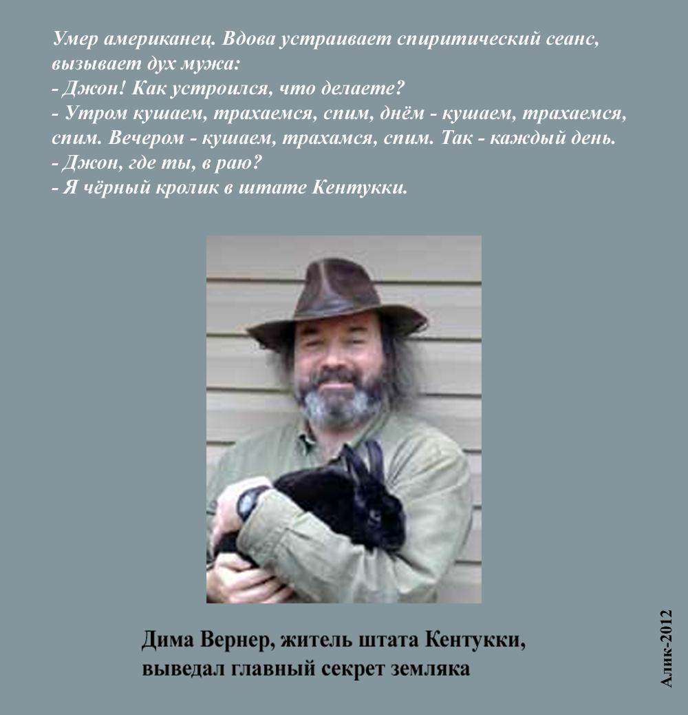 Анекдоты От Димы Вернера