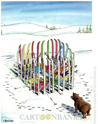 Карикатура: лыжники на природе зимой, Ненашев Владимир