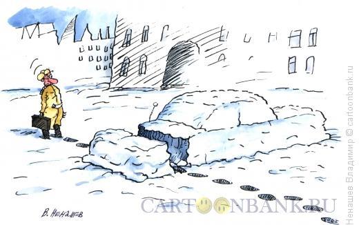 Карикатура: зимниее чудо, Ненашев Владимир