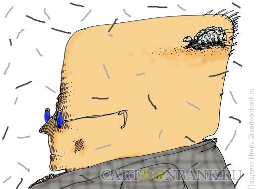 Карикатура: разум, Пащенко Игорь