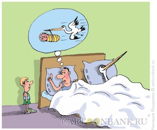 Карикатура: откуда берутся дети, Ненашев Владимир