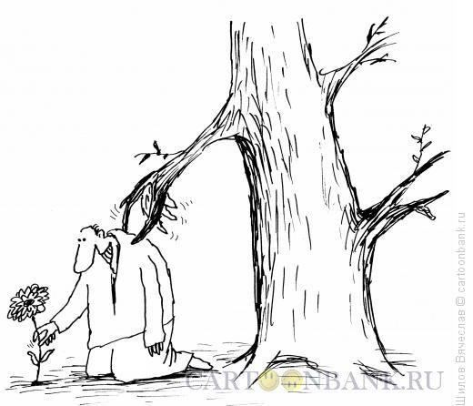 Карикатура: Дерево-защитник, Шилов Вячеслав