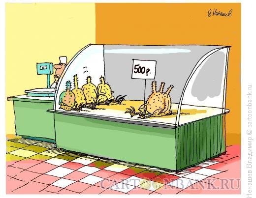 Карикатура: в магазине, Ненашев Владимир