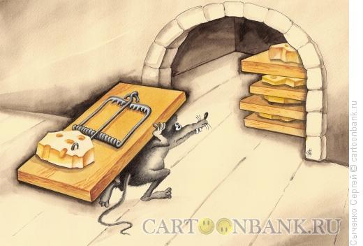 Карикатура: Жадина, Сыченко Сергей