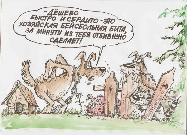 Карикатура: Битый, ИзбасаровБауржан