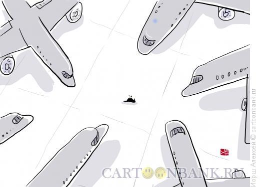 Карикатура: Птичку жалко, Иорш Алексей
