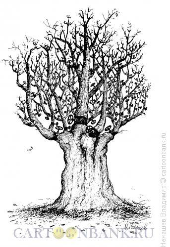 Карикатура: засохшие ожидания, Ненашев Владимир