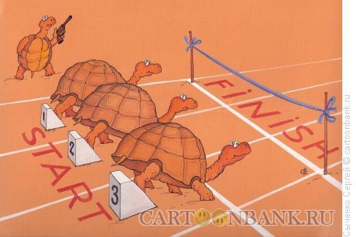 Карикатура: Дистанция, Сыченко Сергей