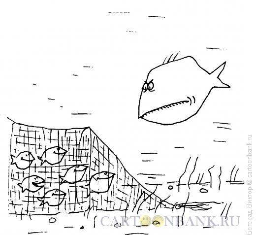 Карикатура: Сетка, Богорад Виктор