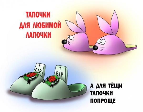 Карикатура: Тапочки, Сергей Корсун