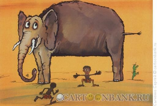 Карикатура: Слон, Сыченко Сергей