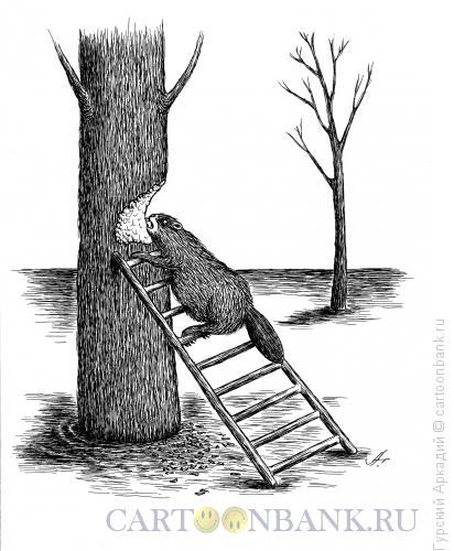 Карикатура: бобр на лестнице, Гурский Аркадий