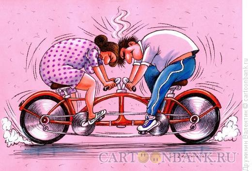 Карикатура: Тандем, Дружинин Валентин