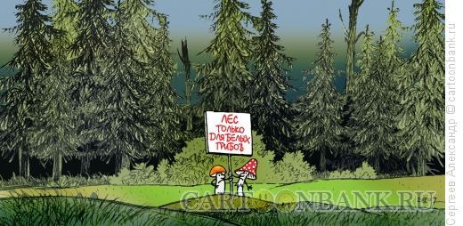 Карикатура: Грибы в лесу, Сергеев Александр