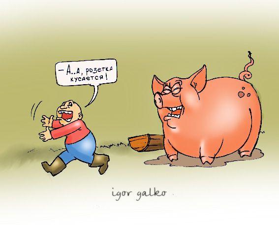 Карикатура: неожиданность