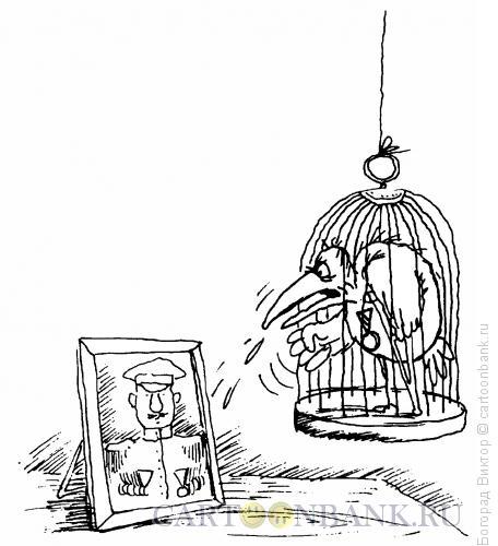 карикатура попугай