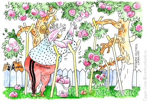 Карикатура: Щедрый урожай, Гуцол Олег