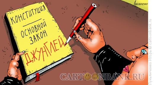 Карикатура: Конституция, Лукьянченко Игорь