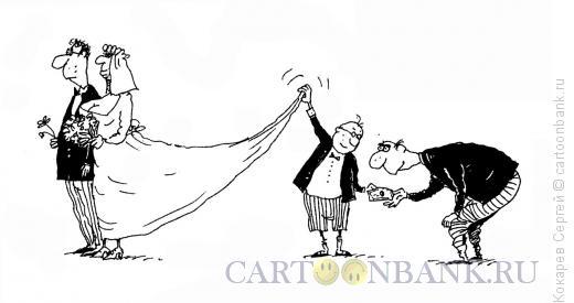 Карикатура: смотрины, Кокарев Сергей