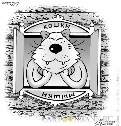 Карикатура: Кошки - мышки, Дубинин Валентин