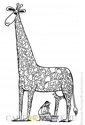 Карикатура: Дойка, Мельник Леонид