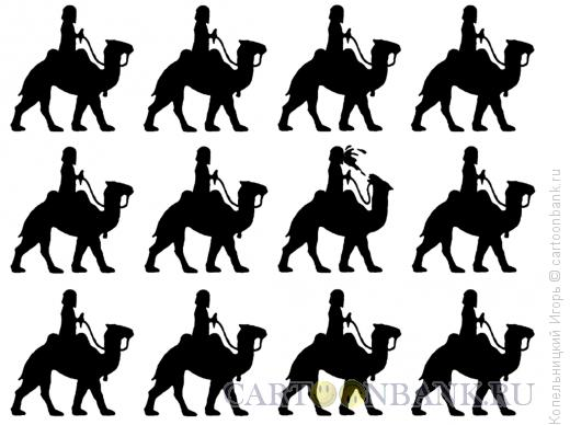 Карикатура: верблюды, Копельницкий Игорь
