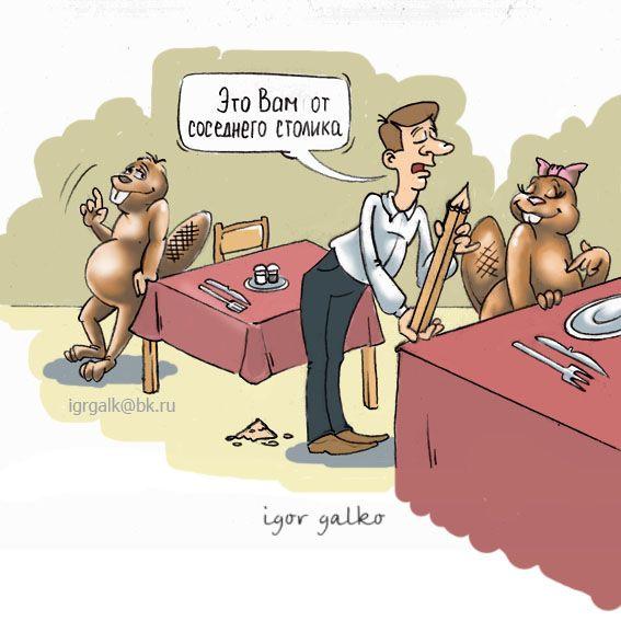 Карикатура: бобры, игорь галко
