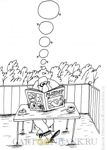 Карикатура: Мужские мысли, Шилов Вячеслав