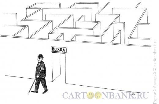 Карикатура: лабиринт, Гурский Аркадий