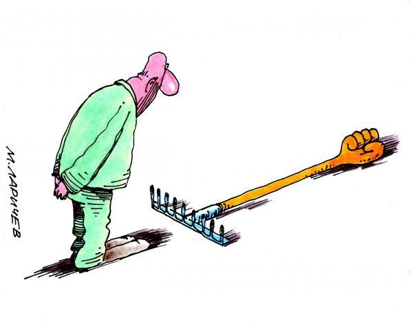 Карикатура: грабли, михаил ларичев