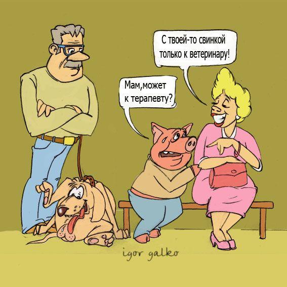 Карикатура: свинка, игорь галко