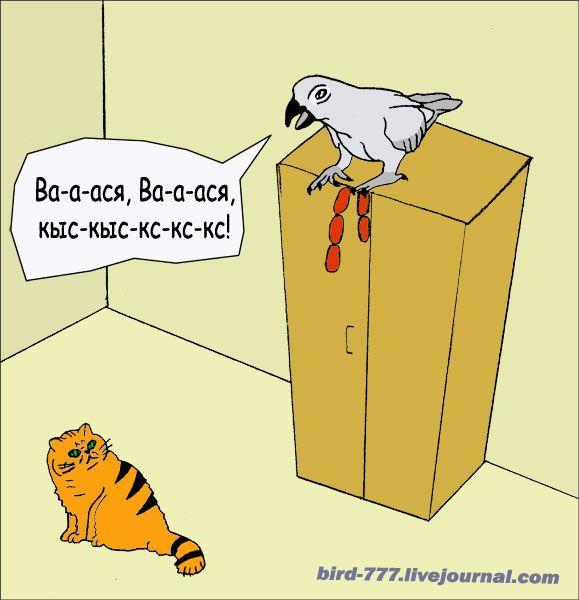Карикатура: Птичья подлость, Птица Счастья