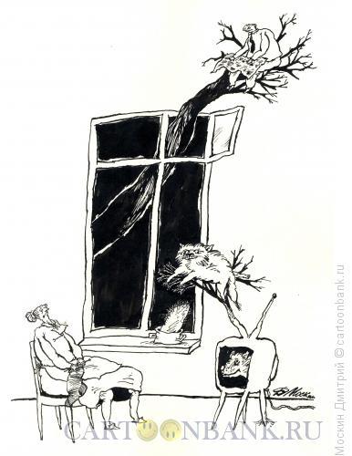 Карикатура: Тихий вечер, Москин Дмитрий