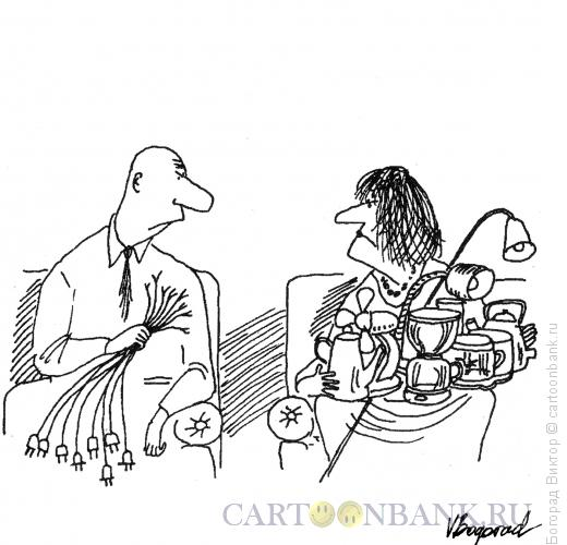 Карикатура: Раздел имущества, Богорад Виктор