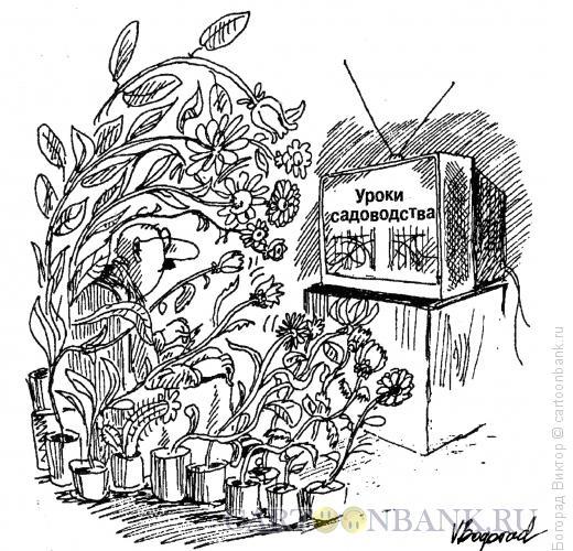 Карикатура: Заинтересованные зрители, Богорад Виктор