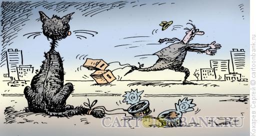 Карикатура: на выборы, Кокарев Сергей