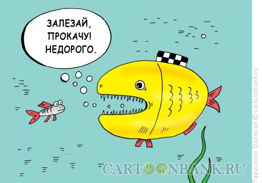 Карикатура: Рыба-такси, Тарасенко Валерий