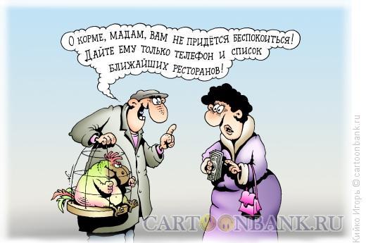 Карикатура: Говорящий попугай, Кийко Игорь