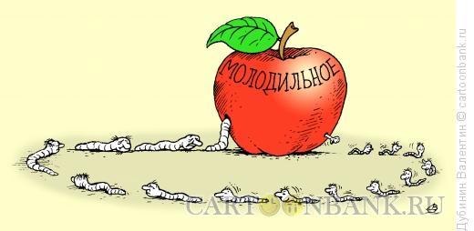 Карикатура: Молодильное яблоко, Дубинин Валентин