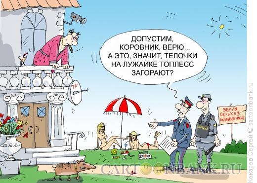 Карикатура: тёлочки на даче, Кокарев Сергей