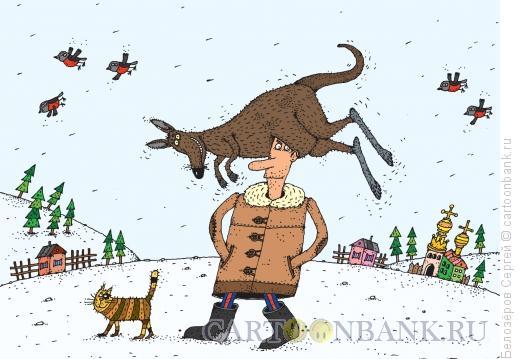 Карикатура: Шапка из Австралии, Белозёров Сергей
