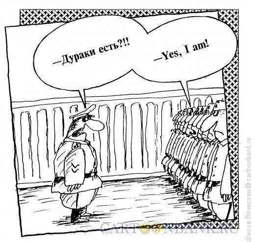 Карикатура: Дураки, Шилов Вячеслав