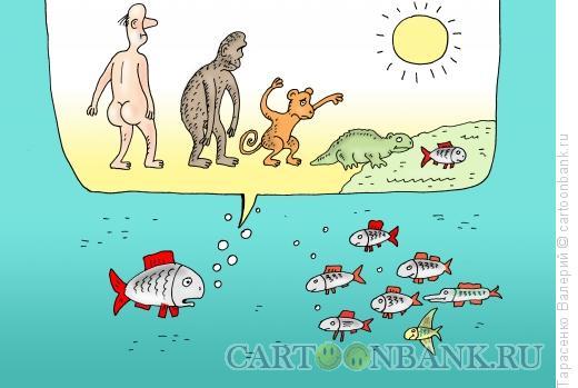 Карикатура: Точка зрения, Тарасенко Валерий