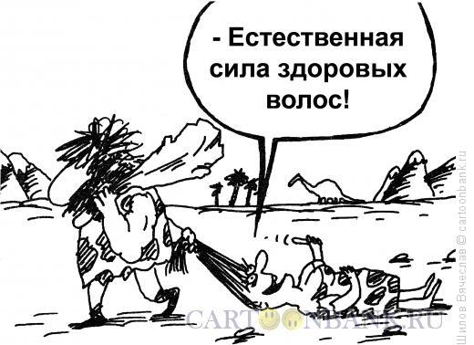 Карикатура: Волосы, Шилов Вячеслав