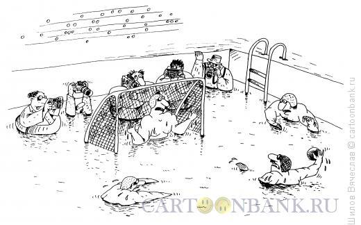 Карикатура: Водное поло, Шилов Вячеслав