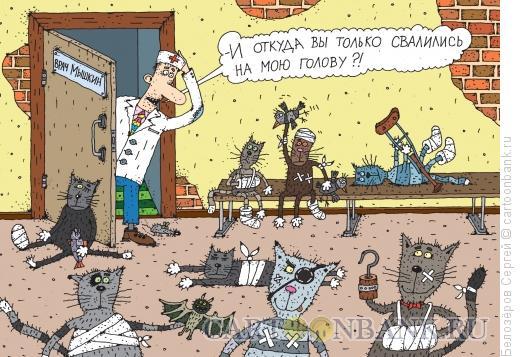 Карикатура: Мартовские коты, Белозёров Сергей