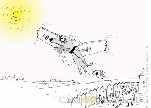 Карикатура: Осуществление мечты, Шилов Вячеслав