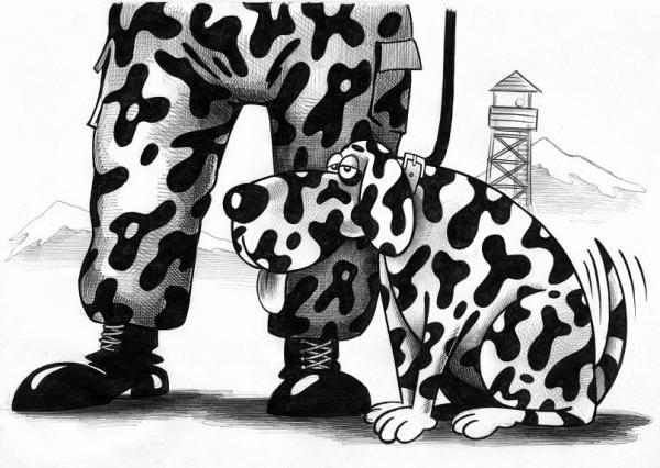 Карикатура: Камуфляж, Сергей Корсун