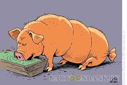 Карикатура: Свинья - колбаса, Дубинин Валентин