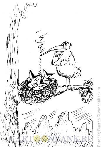 Карикатура: Птенцы, Богорад Виктор